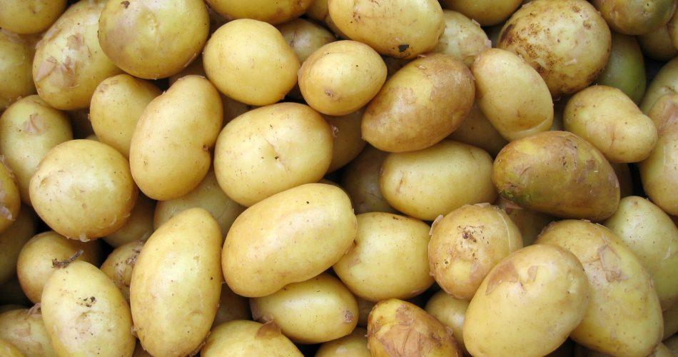 zijn aardappelen gezond?